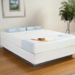 sealy-comfort-series-memory-foam-8-blue-lake-496
